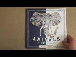 Animals Night Day Coloring Book Amazing To Bring Life Flip Through