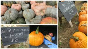 Pumpkin Patch Near Pensacola Fl by Nostalgia Family Friendly Daddy Blog