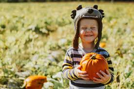 Pumpkin Farms In Belleville Illinois by Belleville Kids Activities U2014 Eckert U0027s Family Farms And Seasonal
