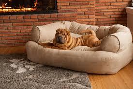 Kuranda Dog Beds by Outdoor Kuranda Dog Beds Reviews With Coolaroo Dog Bed And