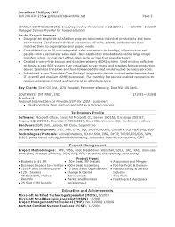 It Manager Resume Example Director Samples Senior Financial Retail Description