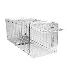 live cat trap feral cat trap trapping humane buy