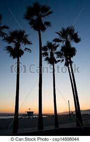 Venice Beach Sunset Palm Trees On At A Warm