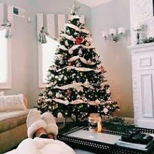 Mr Jingles Christmas Trees Gainesville Fl by Cindy Crawford Is Our Cousin On My Moms Side Our Common