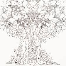 Coloring Book Johanna Basford Enchanted Forest By Adult Colouring