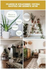 pflanzen im schlafzimmer welche vorteile haben sie und mit