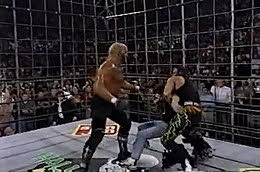 Halloween Havoc 1999 Hogan Sting by Halloween Havoc Wikipedia