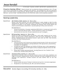 Banking Resume Template Beautiful Investment Objective Examples For Bank Executive Sample Download