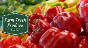 Apple Pumpkin Picking Syracuse Ny by Syracuse U0027s Freshest Selection Of Homegrown Produce