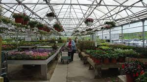 Boardman Petitti Garden Center