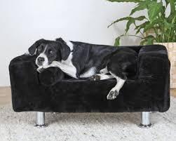 repulsif chien pour canapé canape pour chien canape king of dogs