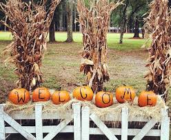 Nearest Pumpkin Patch Shop by Where To Find Pumpkin Patches Near Savannah Savannah Ga