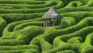 Pineapple Garden Maze 8 breathtaking garden mazes
