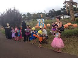 Pumpkin Patch Kula Hawaii by Maui Week 4 The Major Event Of The Trip U2026 And Spam Musubi