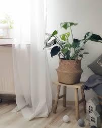 monstera wohnzimmer livingroom pflanzenliebe c