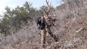 2014 utah elk shed hunting the big 5 brandon pitcher ep 1 youtube