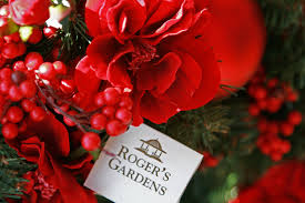 Christmas Tree Shop by The Ultimate Among Christmas Tree Shops Rogers Gardens The