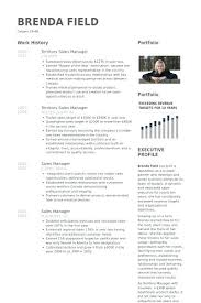 Sales Manager Resume Example Territory Samples Cover Letter