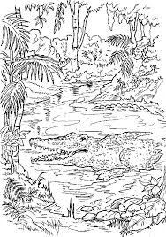 Printable Coloring Pages Of Alligators
