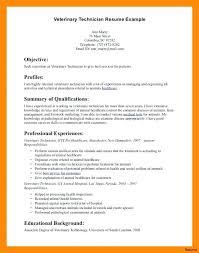 Vet Nurse Cv Template Veterinarian Resume Template Here Are Vet