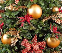 Waste Management Christmas Tree Pickup Mn by Shakopee Residents Have Choices For Christmas Tree Disposal