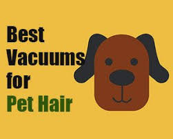 best cordless vacuum for pet hair reviews buying guides