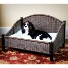 Wayfair Dog Beds by 69 Best Todo Para Perros Images On Pinterest Puppies All Dogs