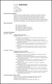 Creative Academic Advisor Resume