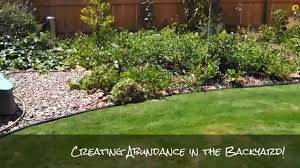 Backyard Foodie - Backyard Permaculture Abundance - YouTube Thriving Backyard Food Forest 5th Year Suburban Permaculture Bill Mollison Father Of Gaenerd 101 Pri Cold Climate Archives Chickweed Patch Garden Design With Permaculture Kitchen Herb Spiral Backyard Orchard For The Yards Pinterest Orchards Australian House Garden January 2017 Archology Download Design And Ideas Gurdjieffouspenskycom Sustainable Farm Future Best 25 Ideas On Vegetable Youtube