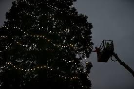 Millers Christmas Tree Farm Ohio by Christmas 2014 Enjoy Some Of The Season U0027s Most Beautiful Holiday
