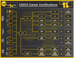 Check Out This Cisco Certifications Pathway Chart We've Put ... Configure Voip In Cisco Packet Tracer My Cwnp Cerfication Path Information Cwnp432276 Cwne 86 Detail Hindi Youtube Career Cerfications Computer 45 Best It Images On Pinterest Charity History Certified Network Engineer Sample Resume 3 16 For Fresher Buy Ccnp Switch 642813 Official Guide Book Online Are You The Right Track The Learning Monitor Software Ip Sla Traffic Netflow Analyzer 27 Cisco Traing Tips Technology