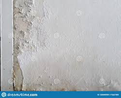 100 Concret Walls Interior E Skimmed Paint From Moisture Stock