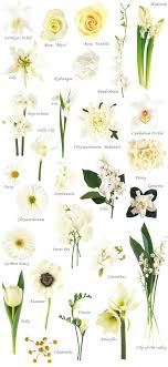 45 best Flower charts images on Pinterest