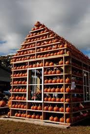 Pumpkin House Kenova Wv Hours by Best 25 Pumpkin Patch Seattle Ideas On Pinterest Pumpkin