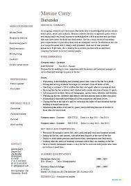 Hospitality Resume Samples Bartender Example Sample Job Description In Examples For Hotel Management