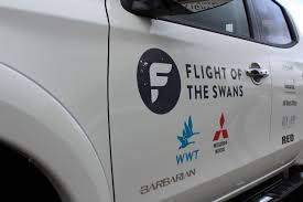 Mitsubishi Gear Up To Support Flight Of The Swans Expedition ... Police Florida Man Kicks Swans Sleeping Duck While Practicing Swan Hill Fire Controlled The Guardian Toyota Hilux Animal Ambulance Carries Precious Cargo Uk Creek Landscaping Crew Our Fleet Equipment Pinterest Trumpeter Invade Valley Environmental Jhnewsandguidecom Schwans Company Wikipedia Blackburnnewscom Swans Found Dead At Luther Marsh 311216 Birdlog Frodsham Birdblog Tyreswanorama Car Wrecker Valley Perth Cash For Cars Removal Suburbs Rescue Southport Visiter