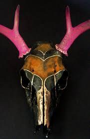 Decorated Cow Skulls Australia by 226 Best Cow Skulls Images On Pinterest Animal Skulls Skull Art