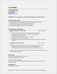 Sample Resume Objective Statements Bank Teller New Manager Examples