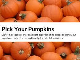 Pumpkin Picking Nj 2015 by Pick A Pumpkin Nj With Christine Milcheck