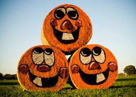 Pumpkin Patch Rice Lake Wi by Wata Members