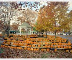 Nh Pumpkin Festival Laconia Nh by Keene Pumpkin Festival Sets A New Guinness World Record For Jack O
