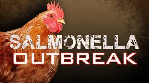 Popularity Of Backyard Chickens Leads To Salmonella Outbreaks The 25 Best Salmonella Symptoms Ideas On Pinterest Memes True Pharmacologist Warns That Eggs From Backyard Chickens Pose Chicken Chick Salpingitis Lash Eggs In Backyard Chickens Raising Chickenswhat You Need To Know Penn State Food Safety Blog And The Higher Risk Health Concerns When Tending Tahoetruckee Nationwide Salmonella Outbreak Linked Pet Makes 611 Sick Nbc News Outbreaks 47 States How Not Get Your Chicken