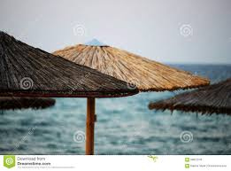 100 Wooden Parasols Sun At Beach By The Sea Stock Image Image