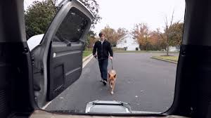 PetSafe Deluxe Telescoping Pet Ramp - YouTube Folding Alinum Dog Ramps Youtube How To Build A Dog Ramp Dirt Roads And Dogs Discount Lucky 6 Ft Telescoping Ramp Rakutencom Load Your Onto Trump With For Truck N Treats Using Dogsup Pet Step For Pickup Best Pickup Allinone Pet Steps And Nearly New In Box Horfield Land Rover Accsories Dogs Uk Car Lease Pcp Pch Deals Steps Fniture The Home Depot New Bravasdogs Blog Car Release Date 2019 20