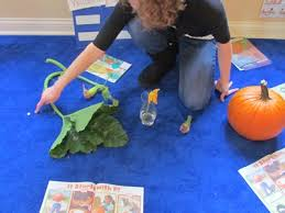 Life Cycle Of A Pumpkin Seed Worksheet by Exploring The Life Cycle Of A Pumpkin Teach Preschool
