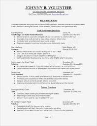 21 Resume Template With Columns Bcbostonians1986