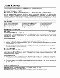 Sample Resume Format For Banking Sector New Bank Intended Manager Template Large Size