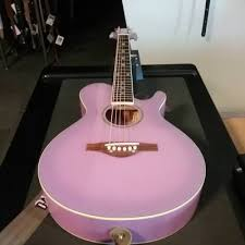 Wildwood Acousic Purple Daze
