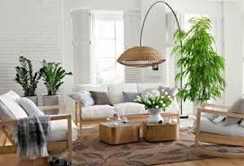 der bambus modisch praktisch wunderschön trendomat