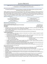 Commercial Banker Business Resume Example